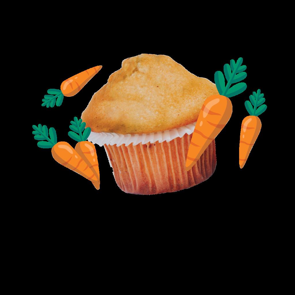 Web_product_Carrot_Feature-Snax4schools, snacks for schools, Zalika Khurram, Halton, Peel, Ontario, Canada, schools,